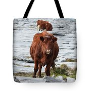 Pair Of Cows Grazing On The Burren In Ireland Tote Bag