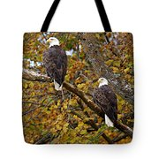 Pair Of Eagles In Autumn Tote Bag