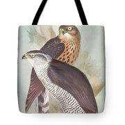 Pair Of Goshawks Tote Bag