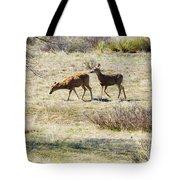 Pair Of Mule Deer Grazing At Chatfield Tote Bag