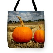Pair Of Perfect Pumpkins Tote Bag