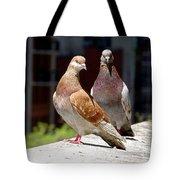 Pair Of Pigeons Tote Bag