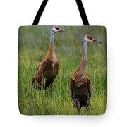 Pair Of Sandhill Cranes Tote Bag