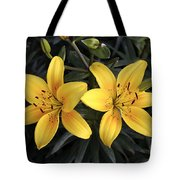 Pair Of Yellow Lilies Tote Bag