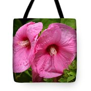 Paired In Pink Tote Bag