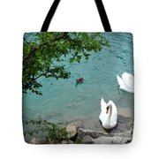 Pairs Of A Feather Tote Bag
