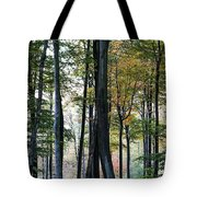 Palatine Forest Tote Bag