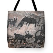 Palatki Pictoglyph Tote Bag