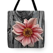 Pale Pink Flower On Wood Tote Bag by Patricia Strand