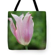 Pale Pink Tulip With Dew Drops Flowering Tote Bag