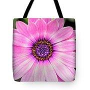 Pale Purple Flower Tote Bag