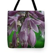 Pale Purple Starbursts Tote Bag