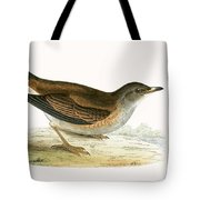 Pale Thrush Tote Bag