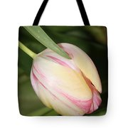 Pale Yellow And Pink Tulip Tote Bag