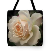 Pale Yellow Rose After The Rain - Glow Tote Bag