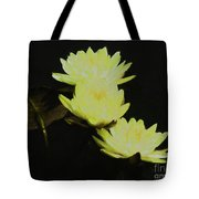Pale Yellow Water Lilies Tote Bag