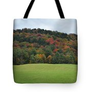 Autumn Palette Tote Bag