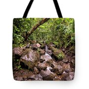 Palikes Stream Along Trail Tote Bag
