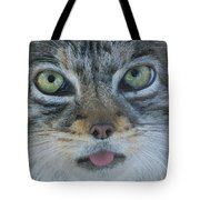 Pallas Cat Tote Bag