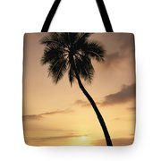 Palm At Sunset Tote Bag