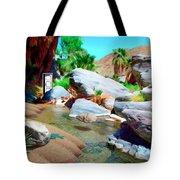 Palm Canyon Park Tote Bag