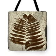 Palm Fossil Sandstone  Tote Bag