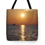 Palm Harbor Florida Tote Bag