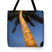 Palm In Blue Sky Tote Bag