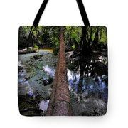 Palm Over Spring Tote Bag