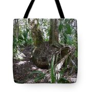 Palm Roots Tote Bag