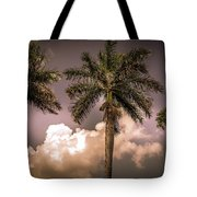 Palm Trees Against Beautiful Sky Tote Bag