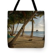 Palm Trees And Hammock On San Pedro Tote Bag