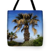 Palm Trees Growing Along The Beach Tote Bag