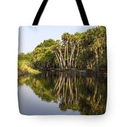 Palm Trees Reflections Tote Bag