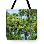 Palmetto Palm Trees In Sub Tropical Climate Of Usa Tote Bag