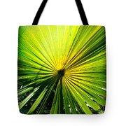 Radial Palm Tote Bag