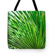 Palms 2 Tote Bag