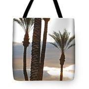 Palms And Light Tote Bag
