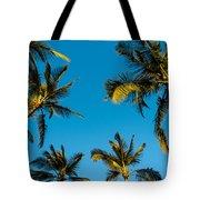 Palms And Sky Tote Bag