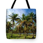 Palms And Sky Tote Bag