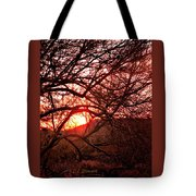 Palo Verde Sunset Tote Bag