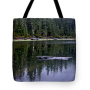 Pamelia Lake Reflection Tote Bag