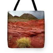 Pampas Grass In The Desert Torotoro National Park Bolivia Tote Bag