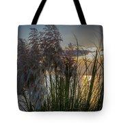 Pampas Grass Sunset Tote Bag