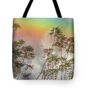 Panama Rainbow Tote Bag