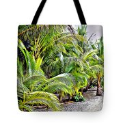 Panama Trees Tote Bag
