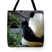 Panda Bear Eating Bamboo Tote Bag