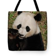 Panda Bear Eating Some Shoots Of Bamboo Tote Bag