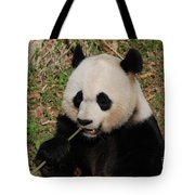 Panda Bear Holding On To Bamboo While Eating  Tote Bag