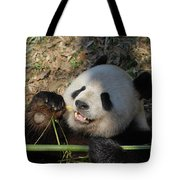 Panda Bear Laying On His Back And Eating Bamboo Tote Bag